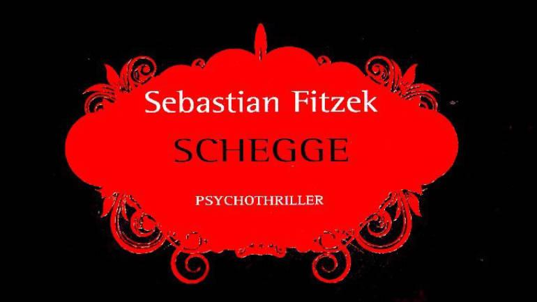 Libri thriller psicologici: recensione di Schegge e Il Sonnambulo