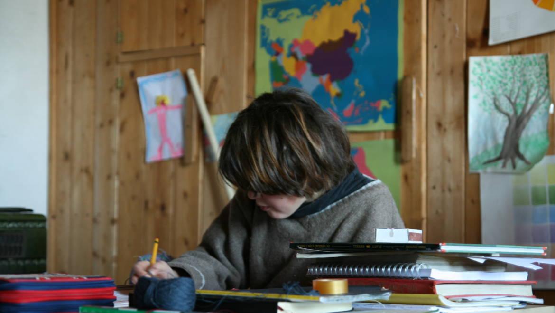 Di Tourette, scuola, home school e metodi di studio